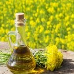 Canola Oil as Lube