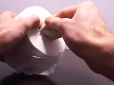 Toilet paper roll pussy 1