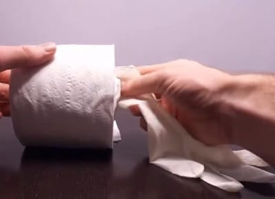 Toilet paper roll pussy 3